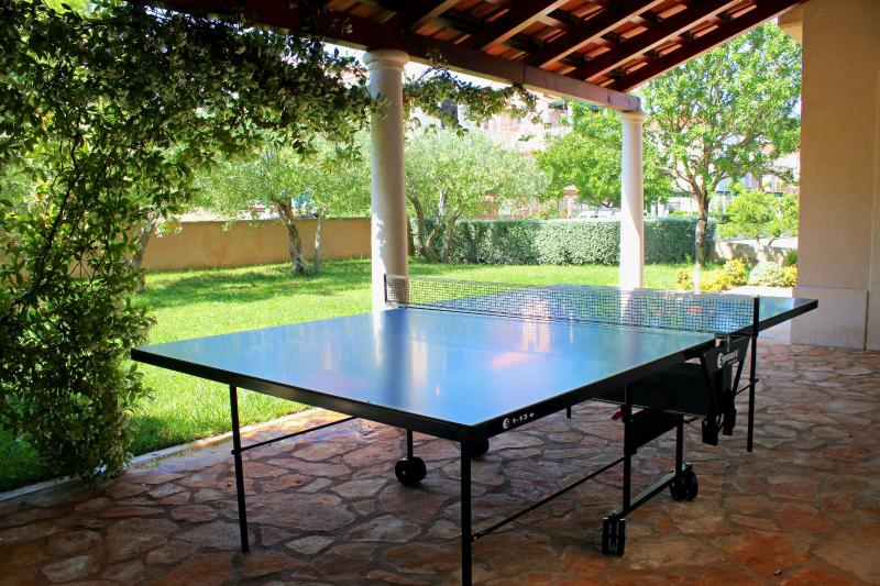 Table tennis (ping pong) in shade