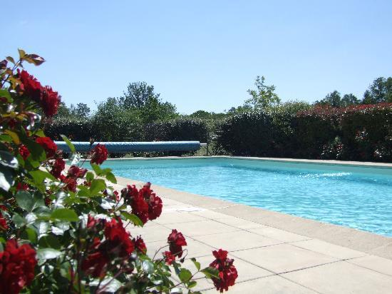 Each villa guest has access to the fully enclosed swimming pool across the lawns..