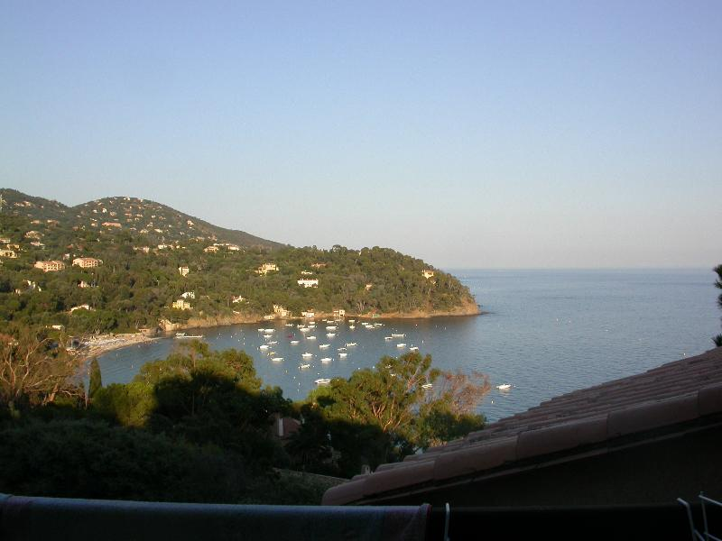 appartamento immerso nel verde, holiday rental in Rayol-Canadel-sur-Mer