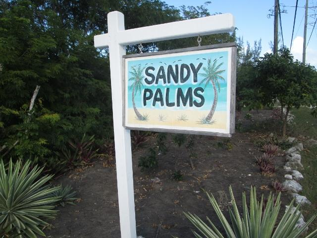 Welcome to Sandy Palms