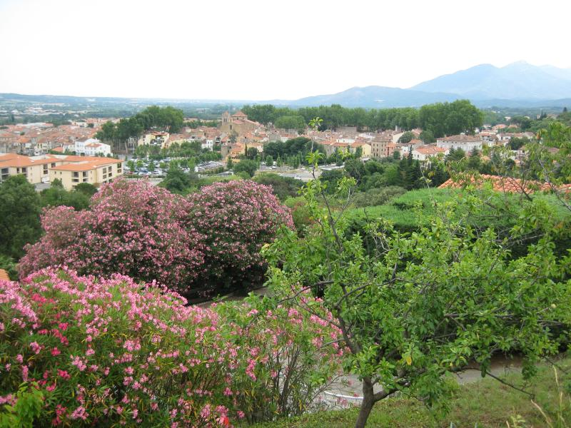 View of Ceret from the hill