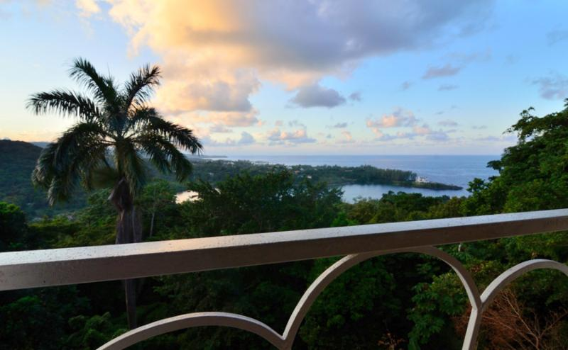The Fan Villa, holiday rental in Port Antonio