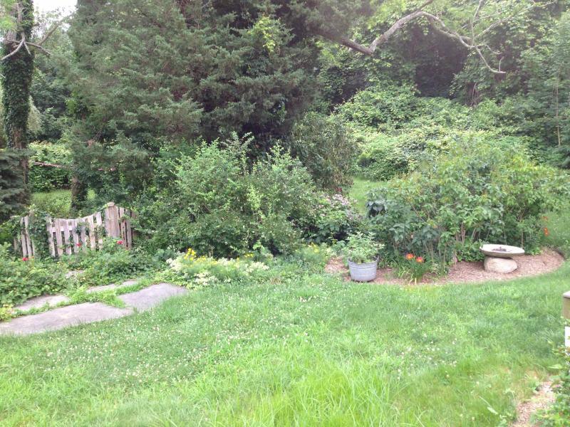 Back Yard Early Spring 2014