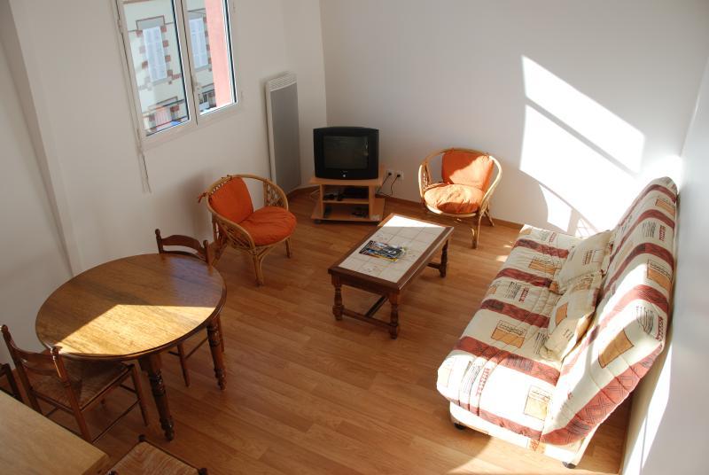Coin salon avec tv. Canapé lit 2 places.