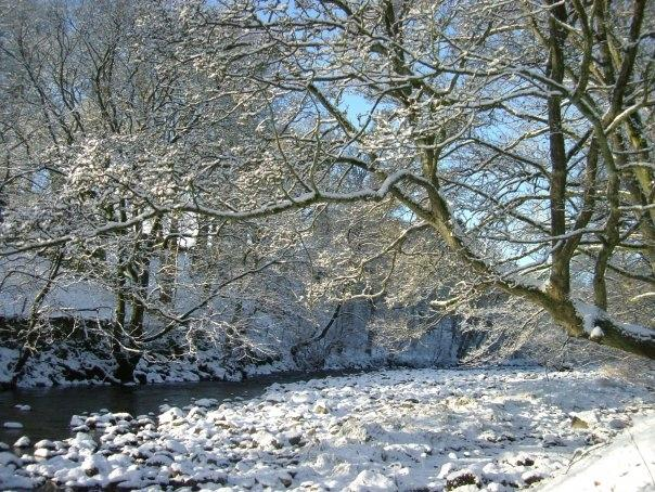 Winter scene of the river opposite the entrance to the cottages