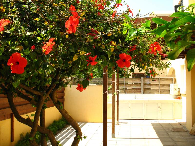 Jasmine Arches-Larnaca-Walk to the beach in 5 min, vacation rental in Pyla