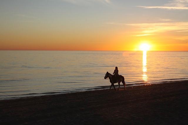 promenade à cheval au coucher du soleil