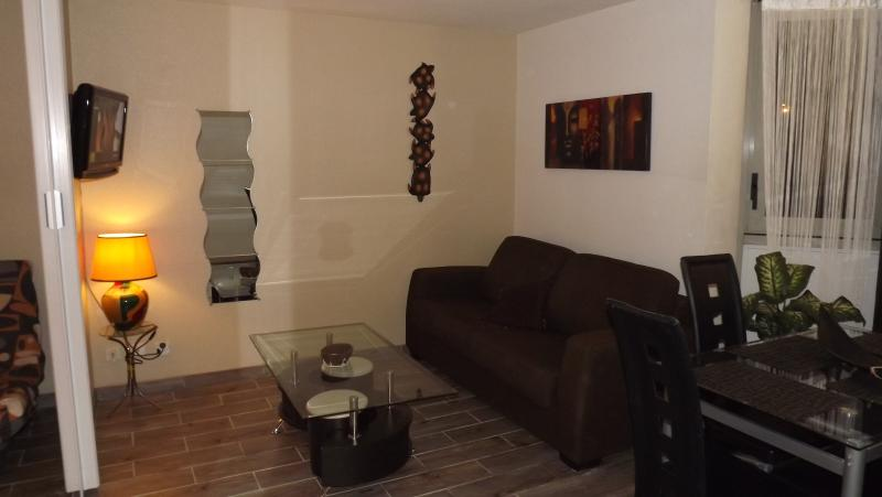 les felibriges, vacation rental in Cannes