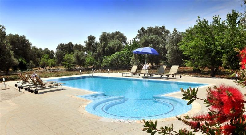 Large private pool with spacious patio area with 8 sun loungers