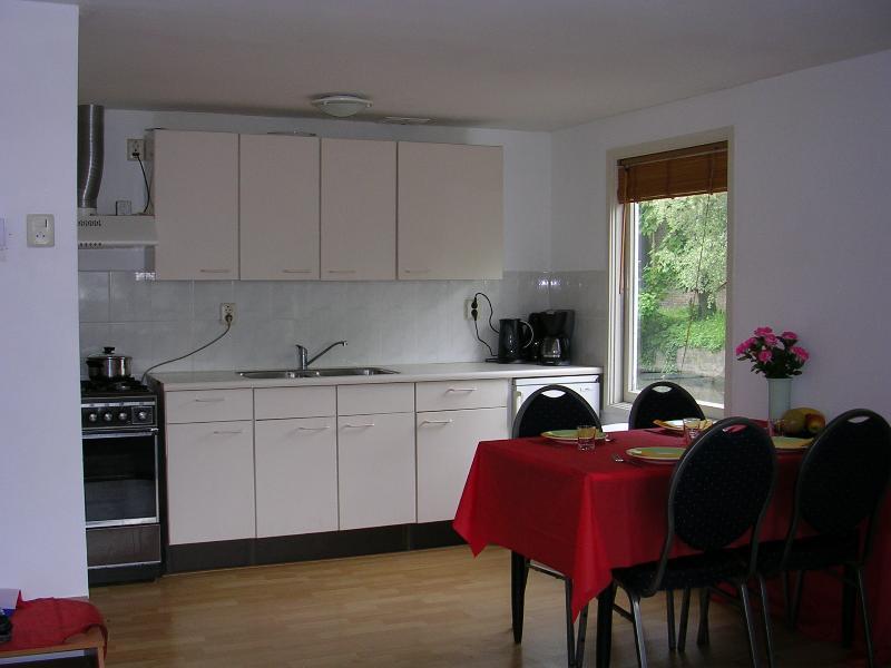 El salón tiene un área de cocina con todos los electrodomésticos modernos