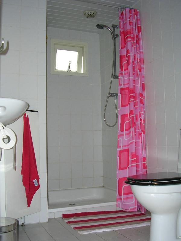 El baño, con ducha, lavabo, inodoro y lavadora