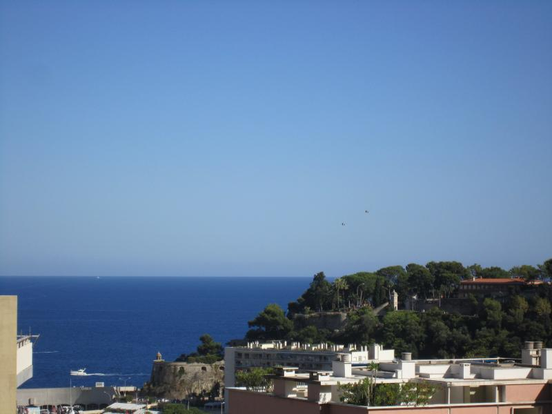 SEA and CASTLE VIEW MONACO, vacation rental in Peille