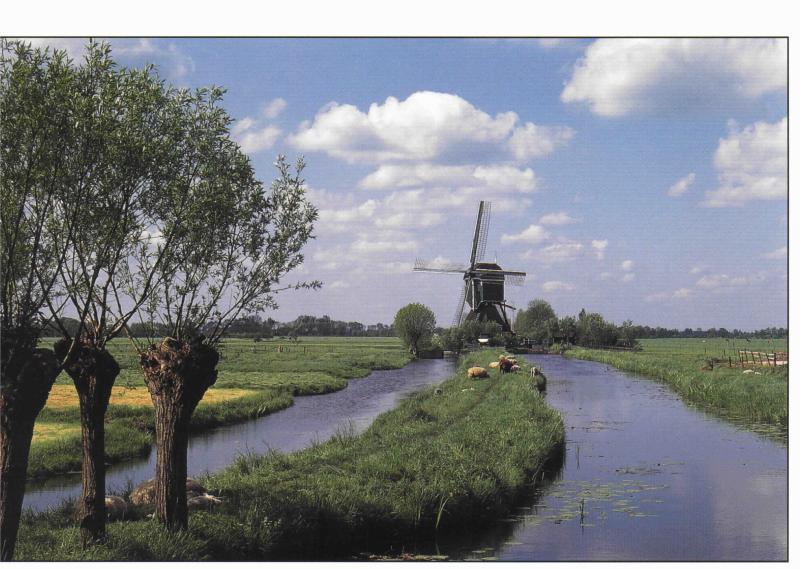 Un típico paisaje pólder holandés, ideal para el ciclismo a través