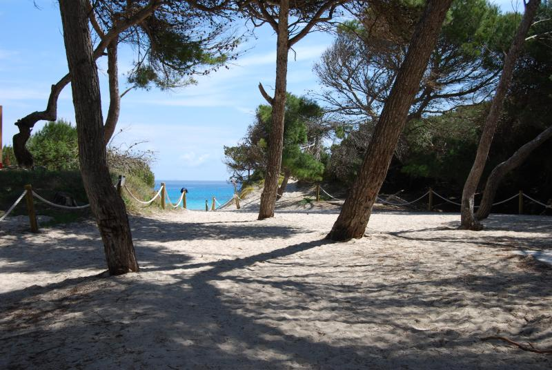 Many Beautiful Beaches Are in Easy Reach by Short Car Journeys.