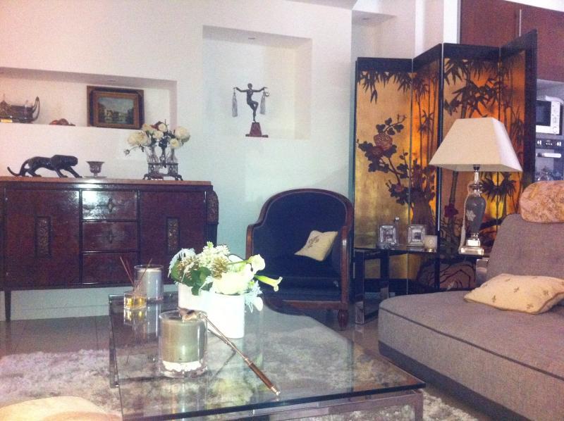 grand salon salle a manger cuisine Americaine  65 m2 Appartement 100m2 sur Patio arbore
