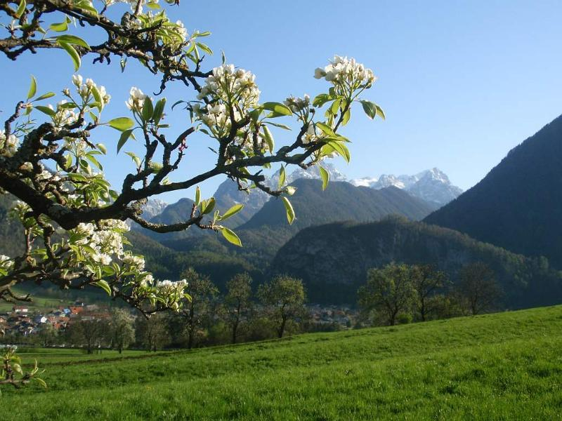 Spring in Dovje - view to the Julian Alps and Triglav
