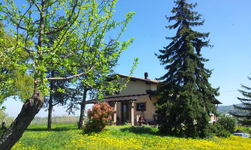 Casa Fernanda Oltrepò Pavese, holiday rental in Zavattarello