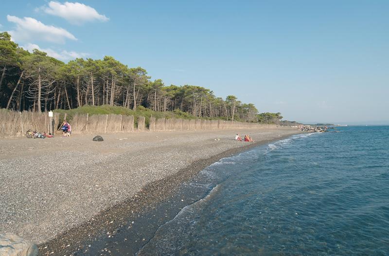 public beach in Marina di Cecina