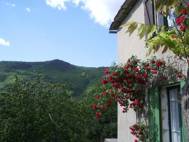 Le Vieux Mas, holiday rental in Saint-Michel-de-Deze