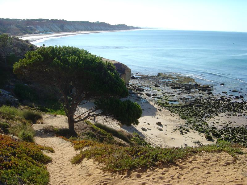 Foto tomada de Olhos da Agua con Praia da Falesia en la espalda - 30 minutos a Olhos d Agua