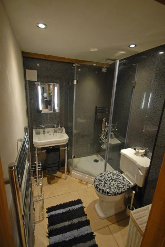 Stylish downstairs shower room