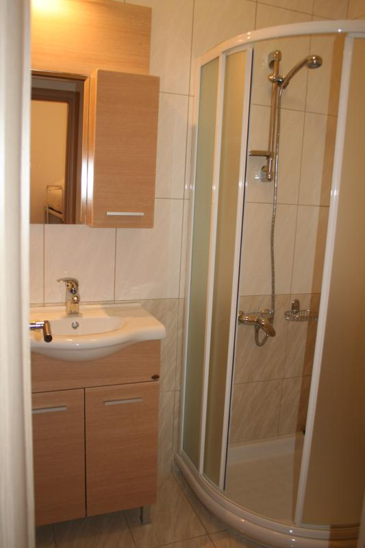 Well-appointed shower room