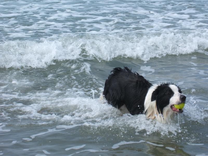 A lovely swim!!