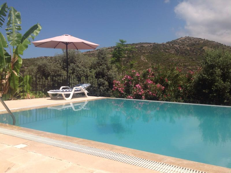 View from pool terrace and lounge to the mountains