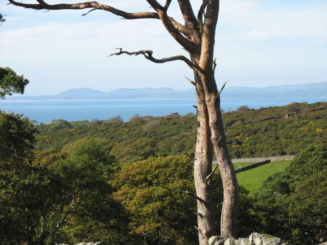 Picture taken from near Llyn Irddyn above Talybont.