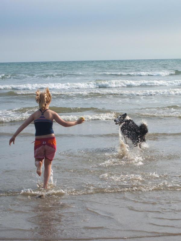 walking the dog on Black Rock Beach, near PORTHMADOG