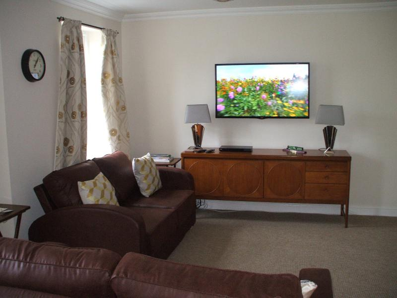 48 inch Freeview HD television and DVD player.