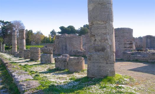 AREA ARCHEOLOGICA DI PAESTUM 'IL FORO'