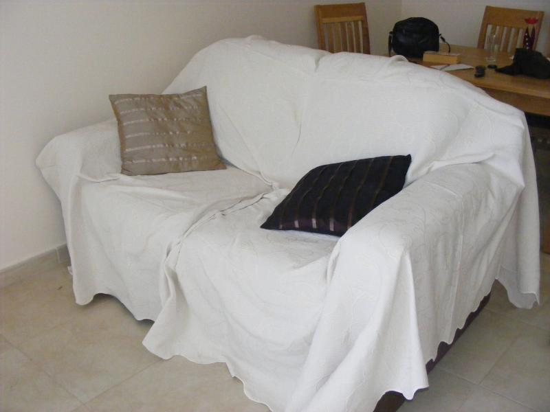 Mobili da salotto, uno dei due divani.