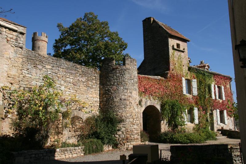 Gîtes du château, vakantiewoning in Vindrac-Alayrac