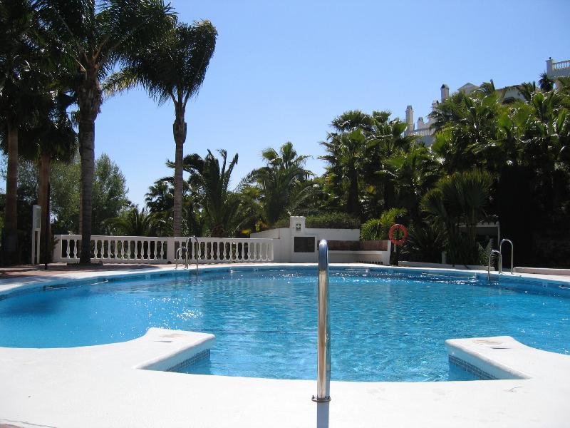 La piscina comunitaria (uno de los tres)