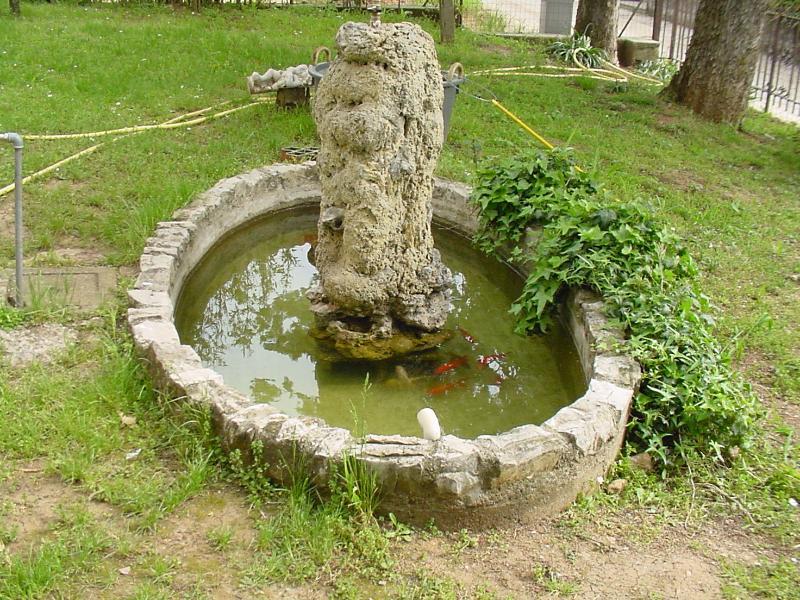 La fontana dei pesci rossi