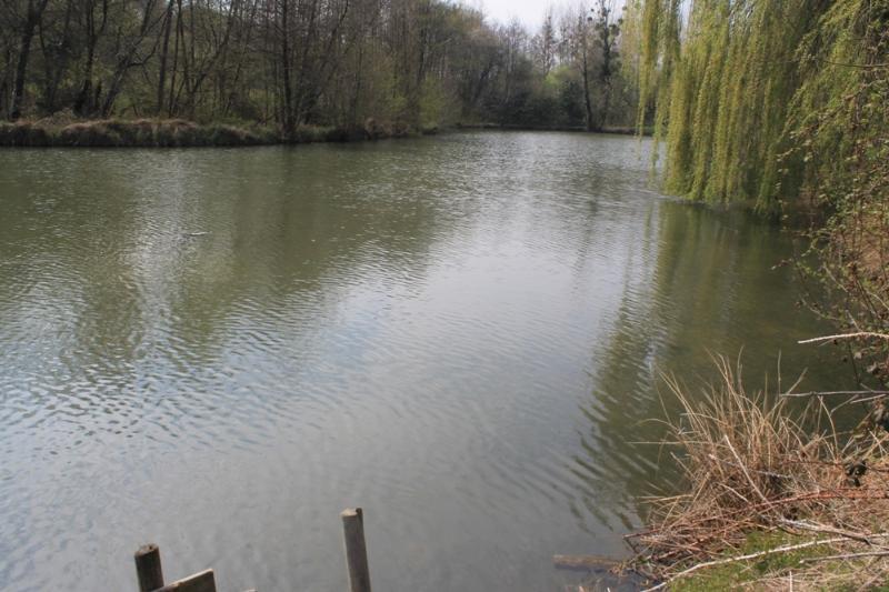 Man made or natural fishing bays option.