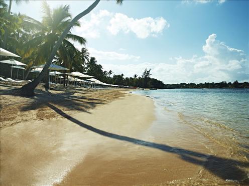 Minita's Beach