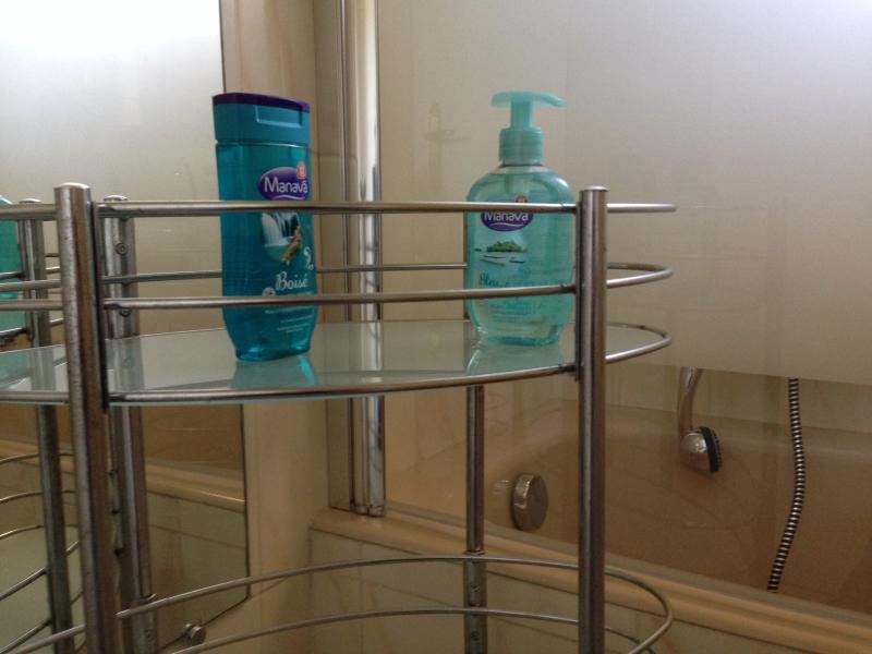 Family Bathroom: shampooing, soap etc