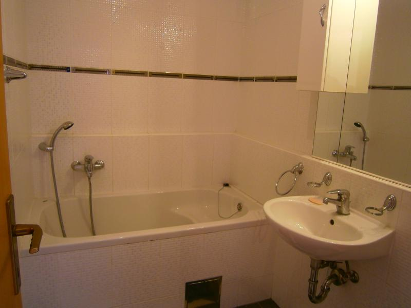 Bathroom downstairs with bath