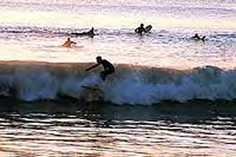 Surfiing at a Local Beach