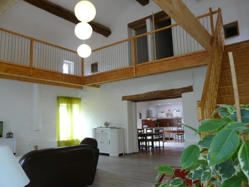 Mas du Plan Des Molles Paillis, holiday rental in Corbes