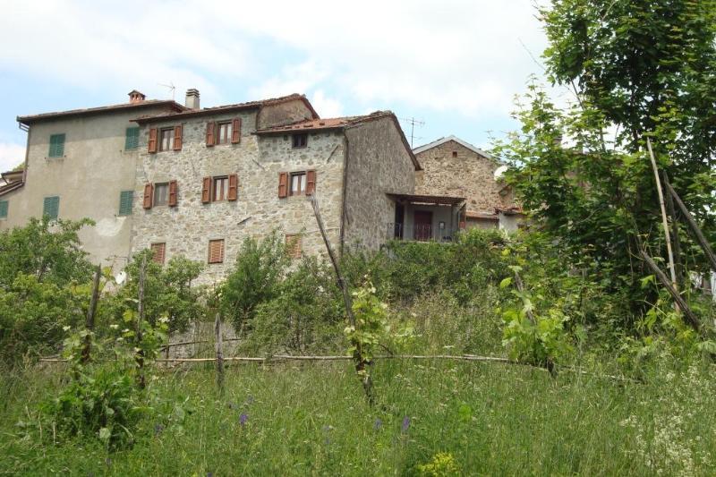 Charming farm Villa Tuscan panorama, sleeps 8, holiday rental in Bagni di Lucca