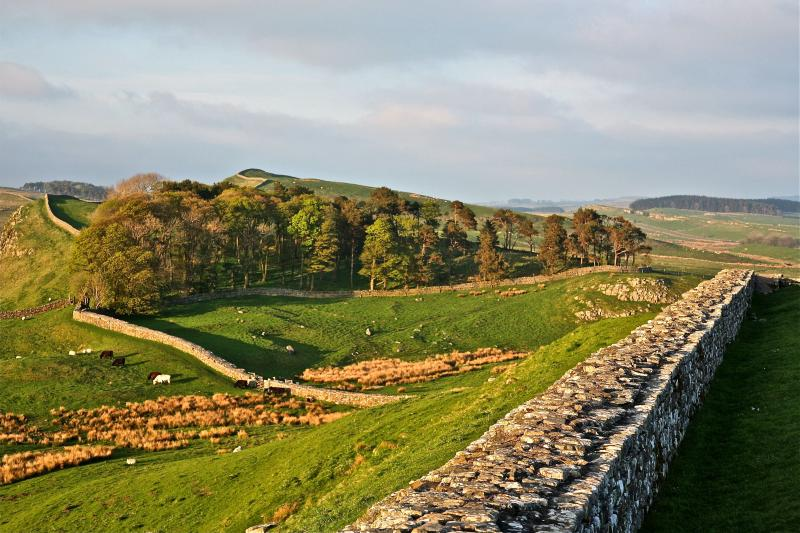 Hadrian's Wall Housesteads near Brownside Cottage, Bardon Mill, Hexham, Northumberland