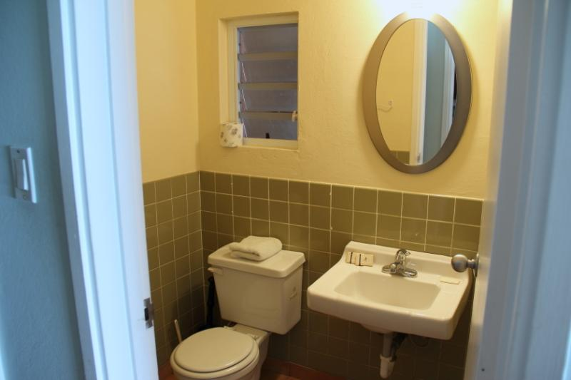 downstairs half batroom