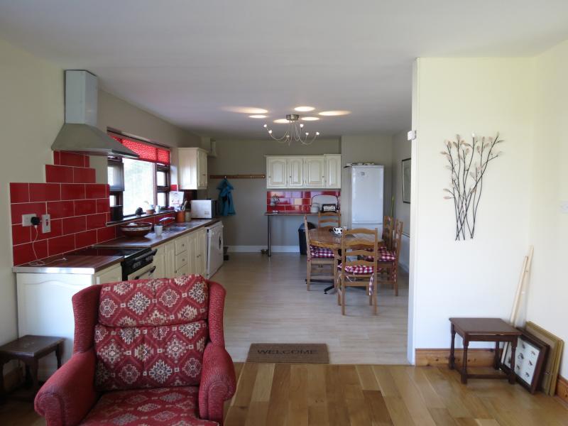 Living- Kitchen