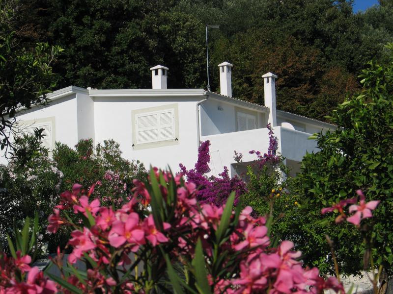 Villa Giulia on June