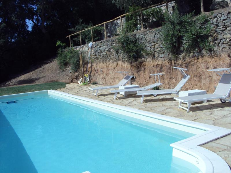 Beautifully reconstructed 18th century Tuscan villa with sea view and private pool, vacation rental in Porto Ercole