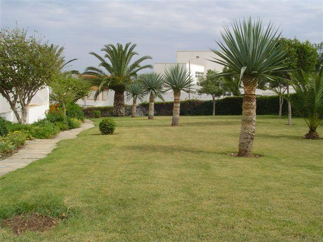 Well maintained shared gardens