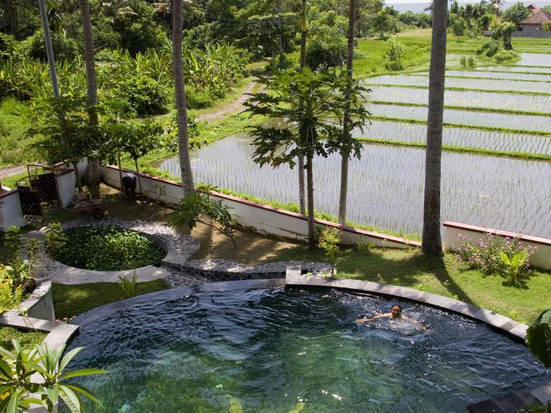 Pool and Fish Habitat